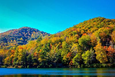 Blairsville GA- Vogel State Park